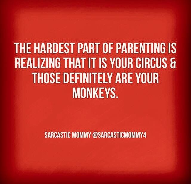 I tell people I feel like we are the circus all of the time!