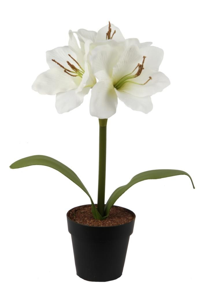 28 best images about fleur artificielle d co on pinterest for Amaryllis deco