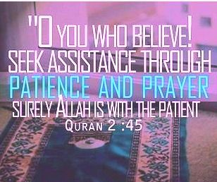 """ O You Who  believe .. Seek Assistance through Patience and Prayer - surely ALLAH is with the Patient- Quran 2 :45"