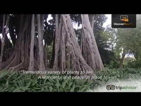 .jardin botánico trf