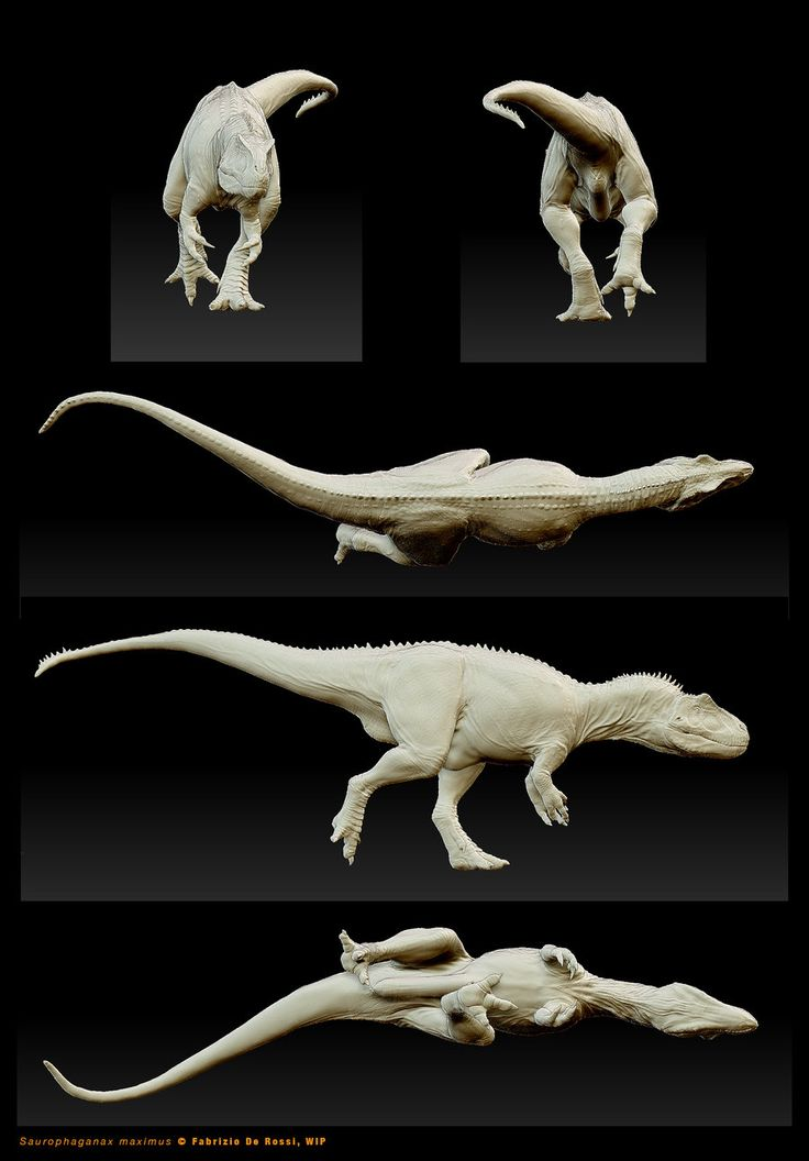 Saurophaganax maximus - 3D-model in progress by FabrizioDeRossi