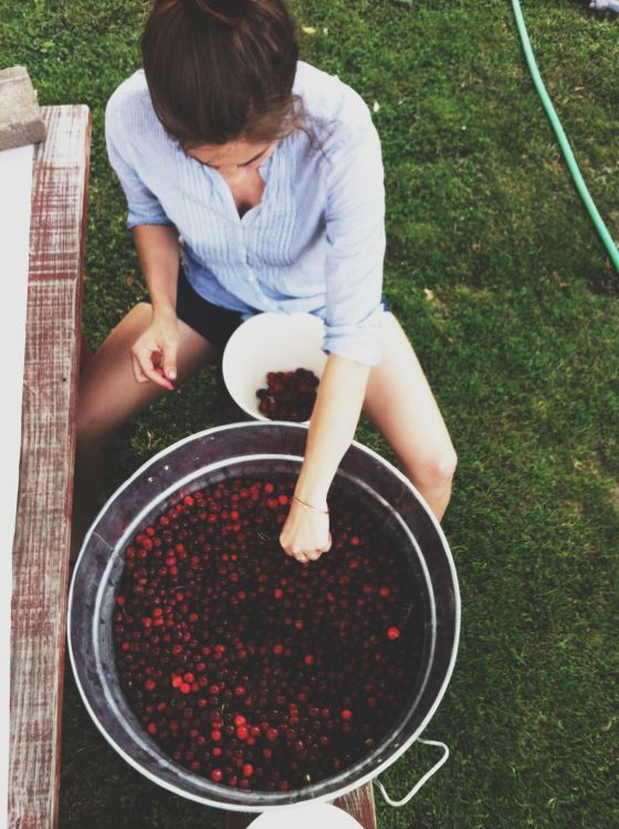 awelltraveledwoman:  dreamanddiscover:  Bekah's Instagram (and blog) is flawless 3   Aww