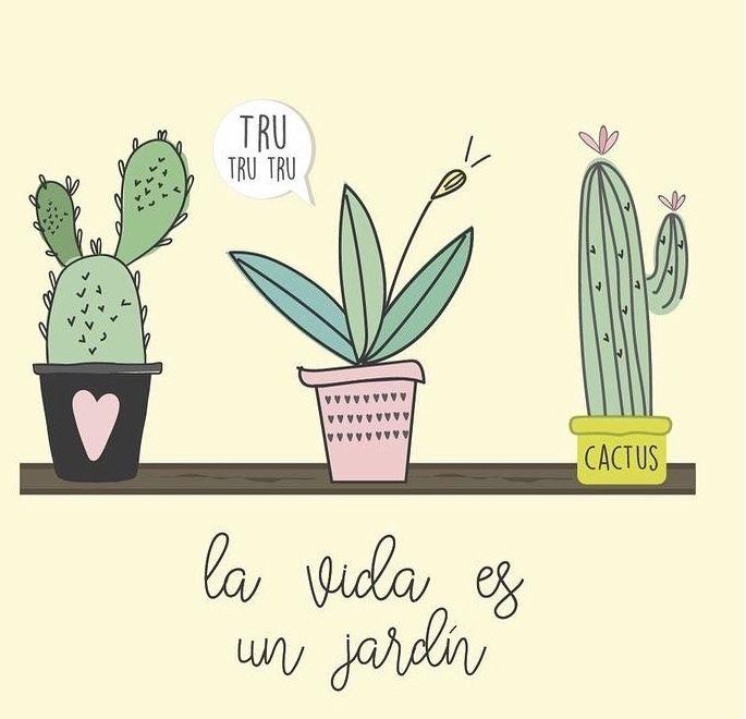 Pin de Florkg en Fondos de pantalla | Frases de cactus, Ilustración de cactus, Cactus y suculentas
