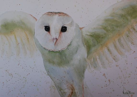 Original Watercolour painting Barn Owl painting by NicoleBarrosArt
