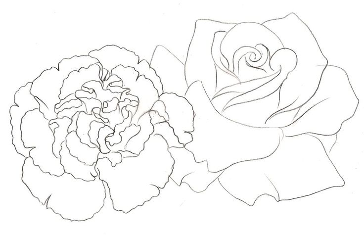 Rose and Carnation Tattoo by ~Metacharis on deviantART