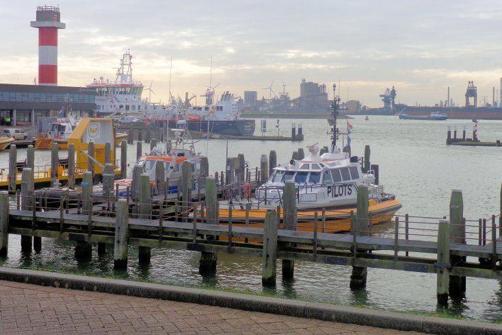De Berghaven is gegraven in 1883 als ligplaats voor schepen van het loodswezen en van Rijkswaterstaat. Het is tevens de uitvalsbasis voor reddingsboten. Bij de haven kijkt het beeld van De Redder uit over het water. Dit monument gedenkt omgekomen opvarenden van reddingsboten uit Hoek van Holland.