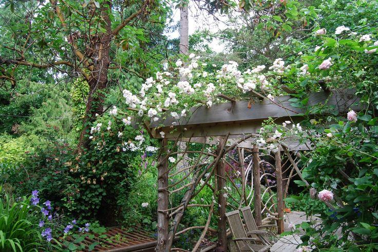 natuurlijke pergola met rozen