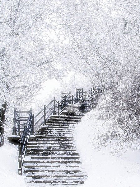 Wondrous White snowy stairs