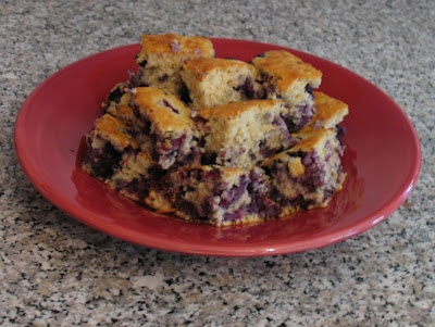 Recipe: Blueberry Oatmeal Cake | Sarah's Cucina Bella ~ I add bran ...