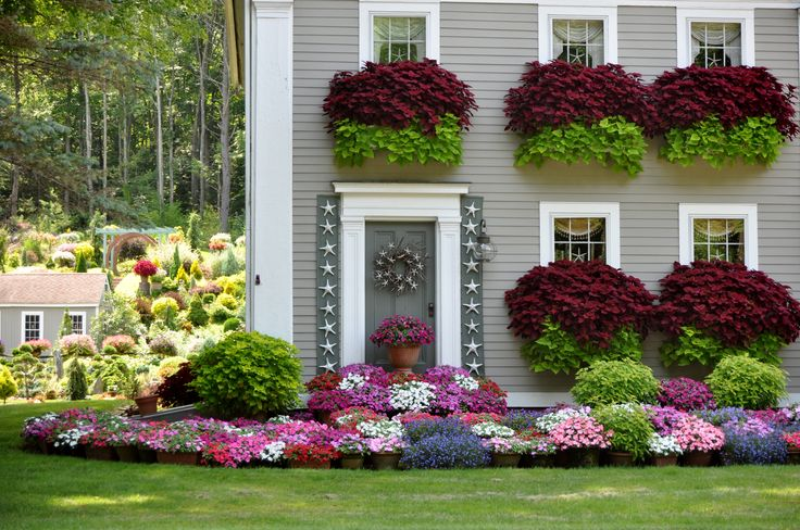 9f175ae3c8c032d7245ef5ade613139f--house-exteriors-avon Historic Colonial Garden Designs on historic english gardens, historic forest hills, american colonial gardens, colonial williamsburg gardens,