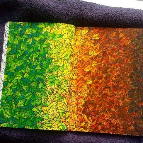 Kleurboek Voor Volwassenen Adult ColoringColoring BookJohanna