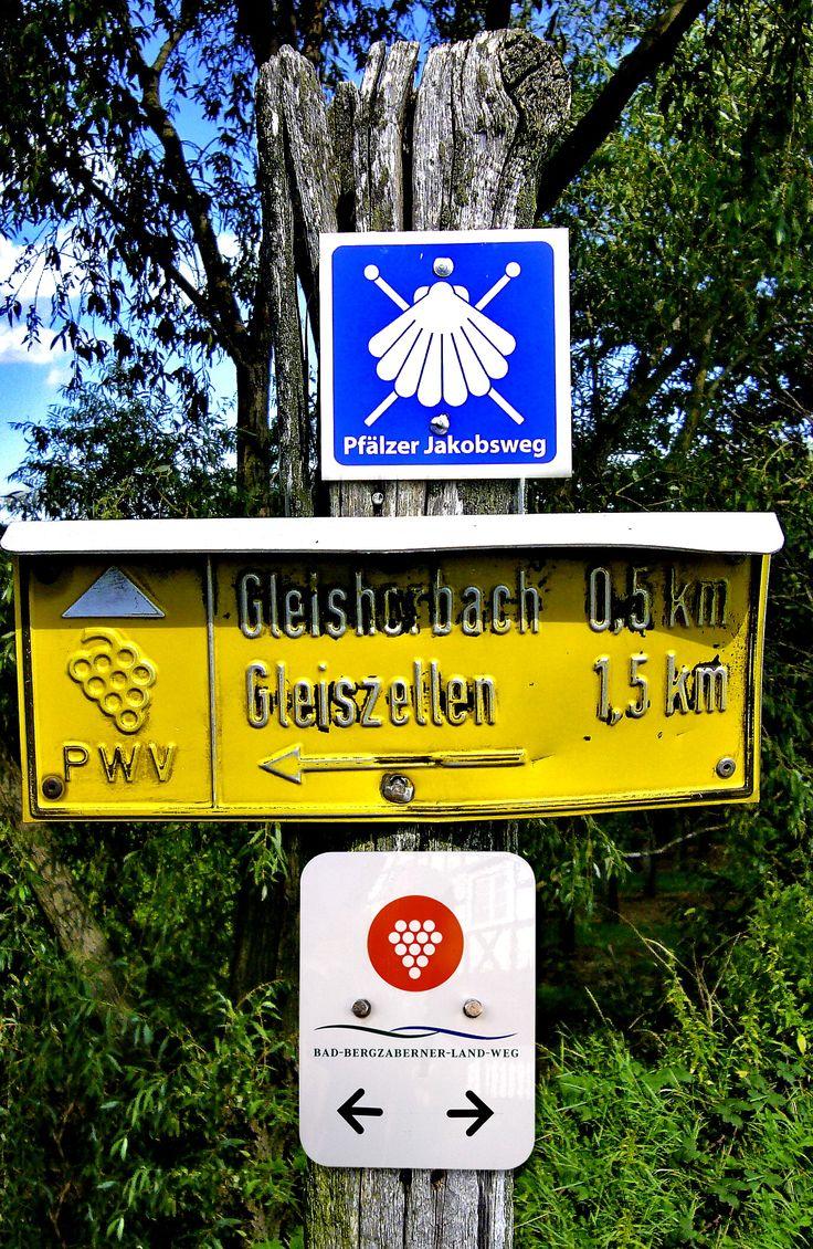 Wandern in der Pfalz   www.pfalz,co