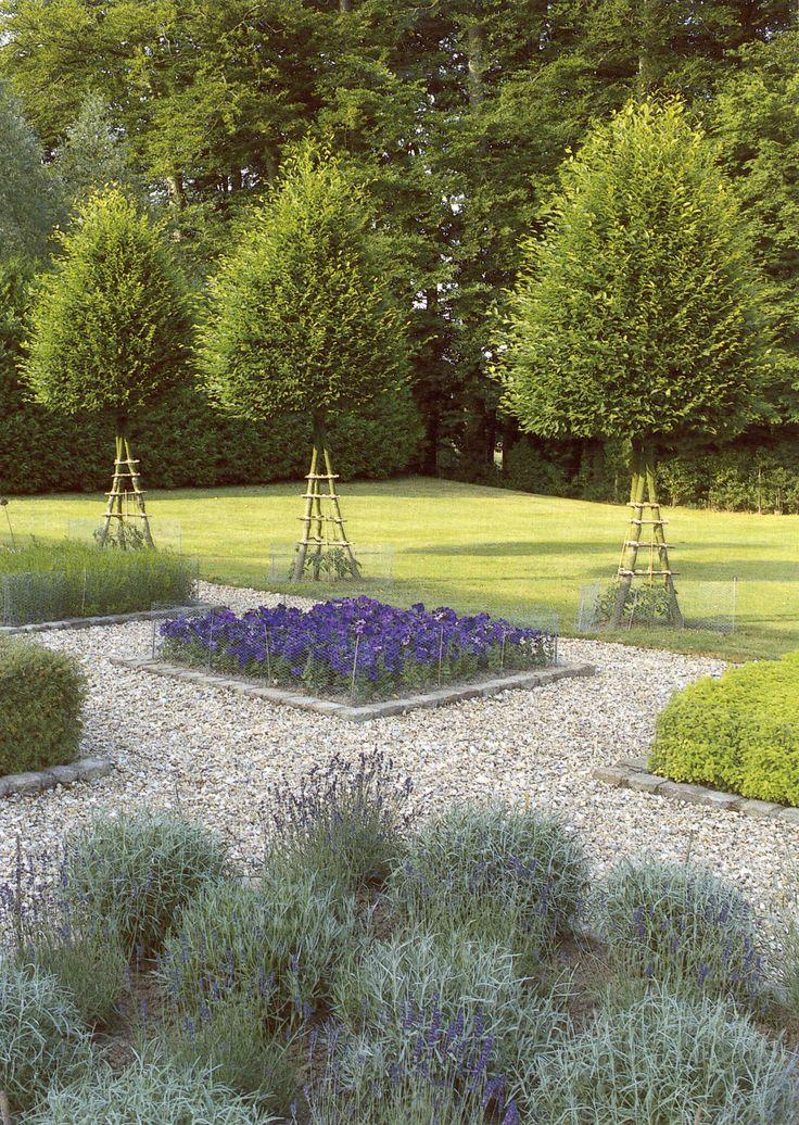 Interesting use of Carpinus- Landscape Design by Miranda Brooks
