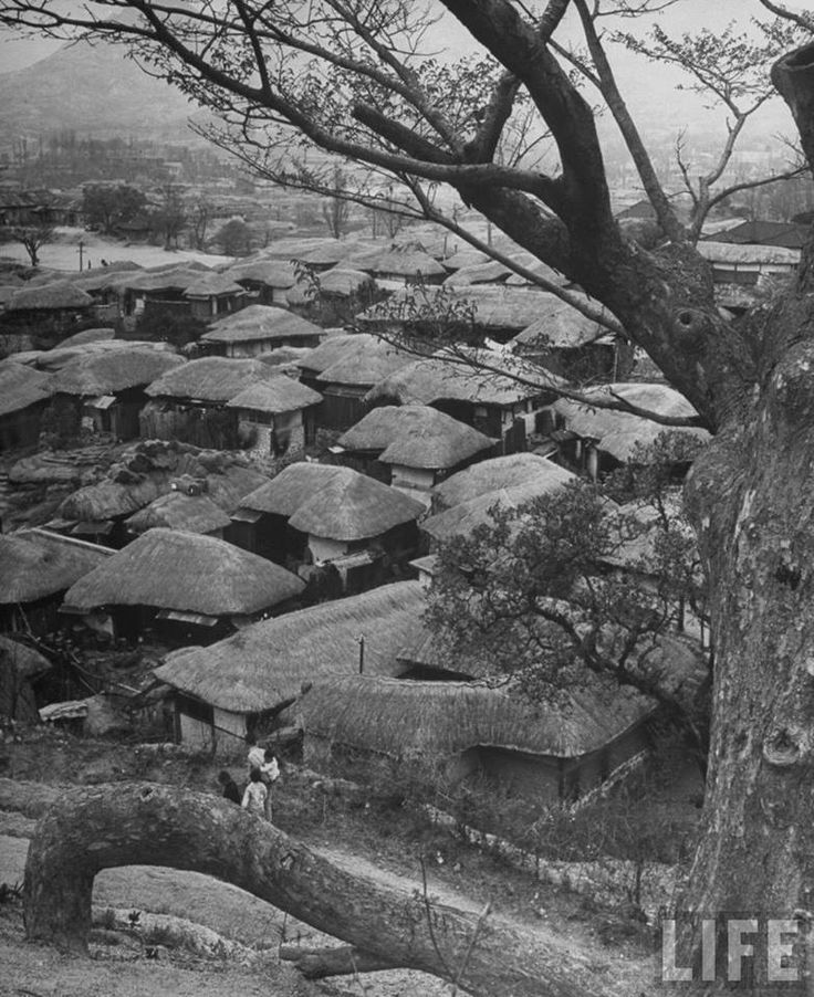 Korea, 1947 Photographer John Florea Time Life Pictures Looking down onto a Korean village, the houses all have thatched roofs.