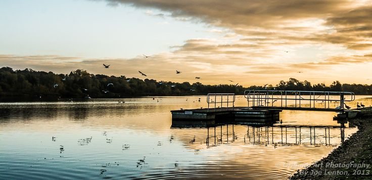 "This image of birds at dawn at Whitlingham Broad in Norfolk won a ""highly commended"" award in the Societies October competition under the Pictorial & Fine Art section"
