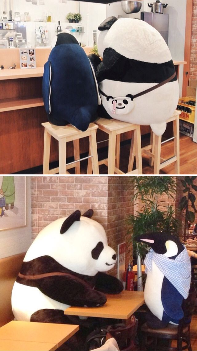 There's a legit Shirokuma Cafe in Shinjuku. You can have coffee with Panda-kun and Penguin-san!