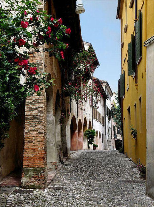 vicolo Dotti, Treviso (Italy)