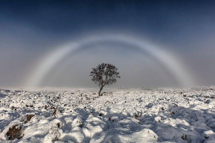 Fog bow (colourless rainbow made up of tiny water droplets that cause fog) on Rannoch Moor