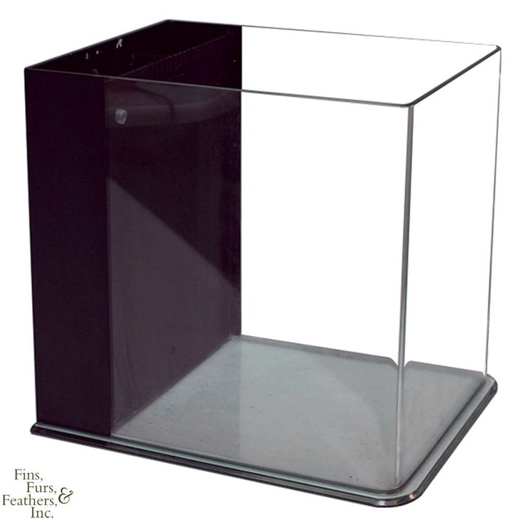 JBJ Nano Cube RL Rimless Biotope Aquarium - 8 Gallon  sc 1 st  Pinterest & Best 25+ Rimless aquarium ideas on Pinterest | Aquarium aquascape ... azcodes.com