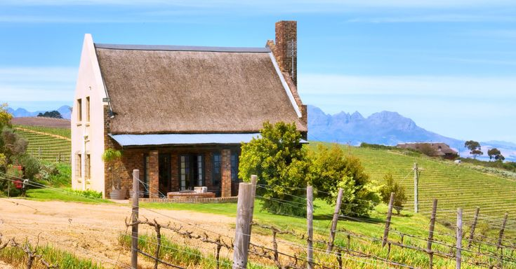 Learn about Chenin Blanc, a crisp, dry white wine that is popularly grown in South Africa. Read our free guide to Chenin Blanc now!