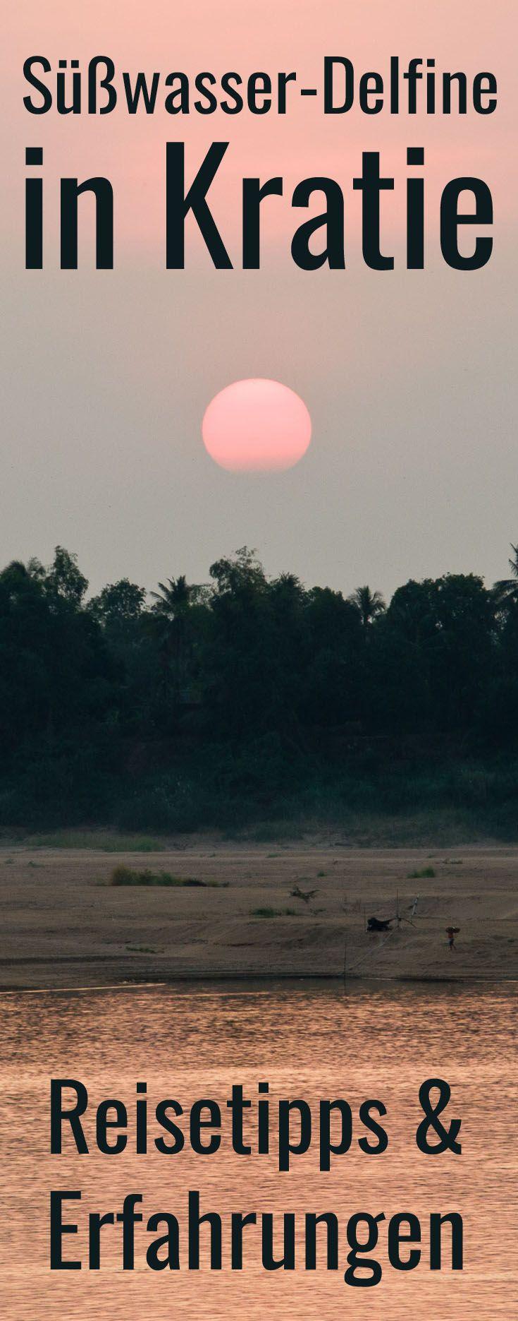Kratie: Süßwasserdelfine im Mekong sind hier die Sehenswürdigkeiten. Die plumpen Tiere werden auch Irawaddy-Delfine genannt. Du kannst sie auch im Nordosten an der Grenze zu Laos bei Stung Treng antreffen. Tipps für die Flußdelfine und unbekannte Reiseziele in Kambodscha im Blogbeitrag.