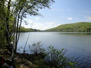 Franklin Lakes Nature Preserve - Walk this trail daily - #mayerniklifestyle