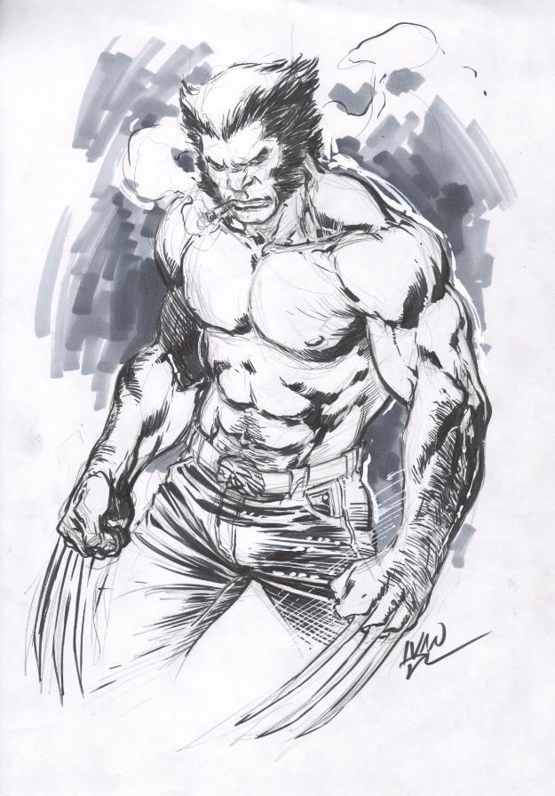 Wolverine by ivan reis sketch pinterest comic - Dessin wolverine ...