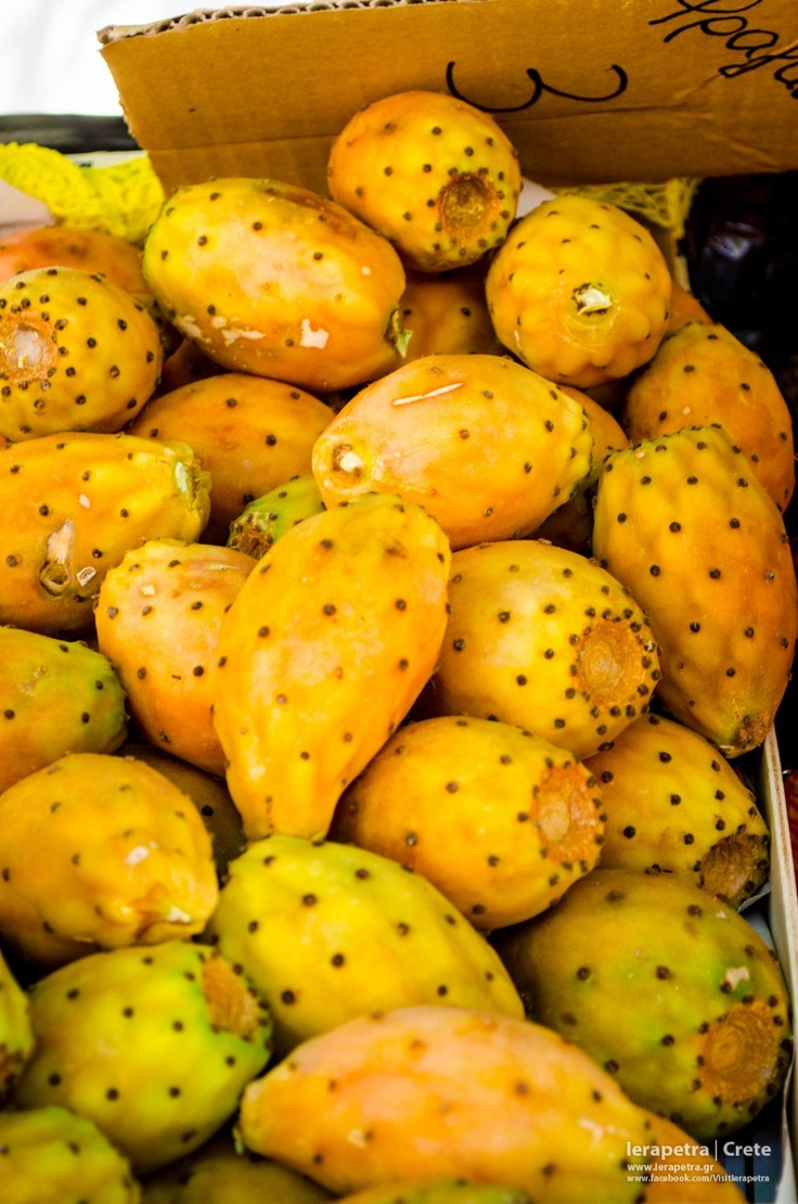 Prickly pears: Spiky outside... delicious inside!  Φραγκόσυκα !