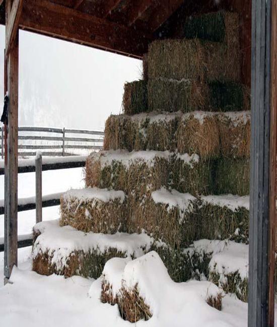 Barn, Hay, Snow - three of my favorite things.