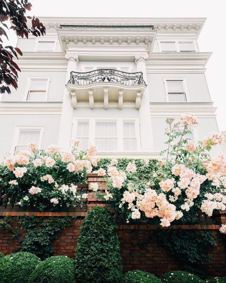 a little bit of lace — andantegrazioso:  San Francisco |  azvea