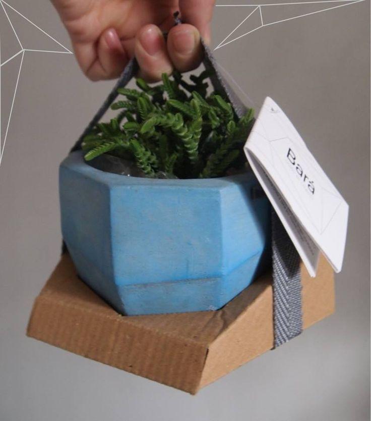 · Nuevo Packaging 2015 · ·Maceta · Talle S · Celeste ·Maceta de Diseño elaborada en Cemento. · · ·Variedad de Colores · ·info@baracemento.com.ar