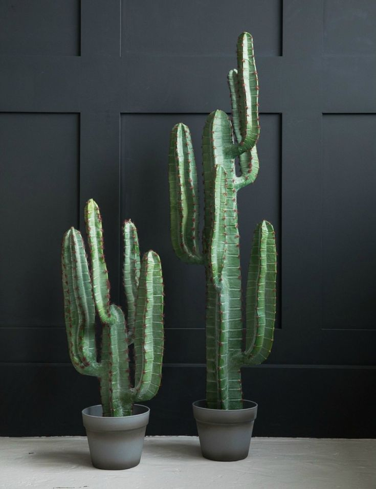 Abigail Ahern Yuha Cactus at Rose & Grey