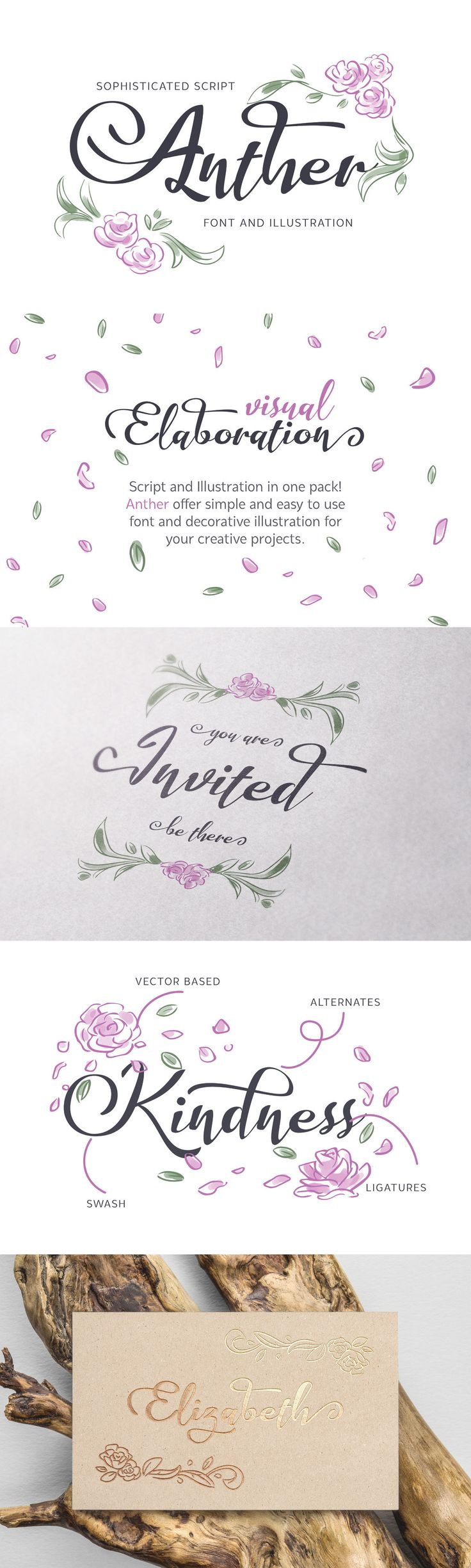 Anther - Script and Illustration in one pack! Anther offer simple and easy to use font and decorative illus...