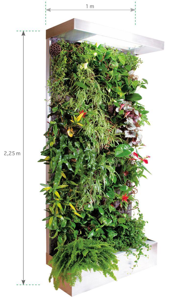 Mur Vegetal Interieur Vertical Garden Indoor Wall