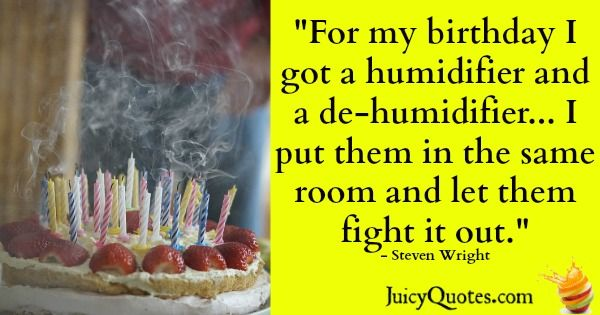 Birthday Quote - Steven Wright