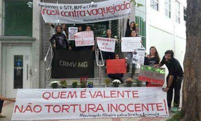 """""""O Grito do Bicho"""": Médicos veterinários protestam contra apoio de seu..."""