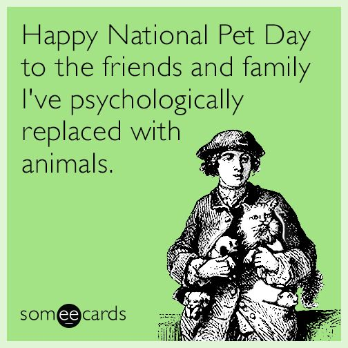Free, Cry For Help Ecard: Happy National Pet Day to the friends and family I've psychologically replaced with animals.