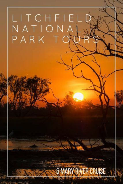 Join Litchfield National Park Tours: see & swim at spectacular waterfalls. Then take a Mary River Cruise: see crocodiles & Australian Outback wildlife