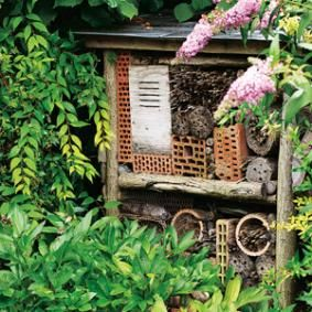 Accueillir les insectes au jardin<br />Rustica