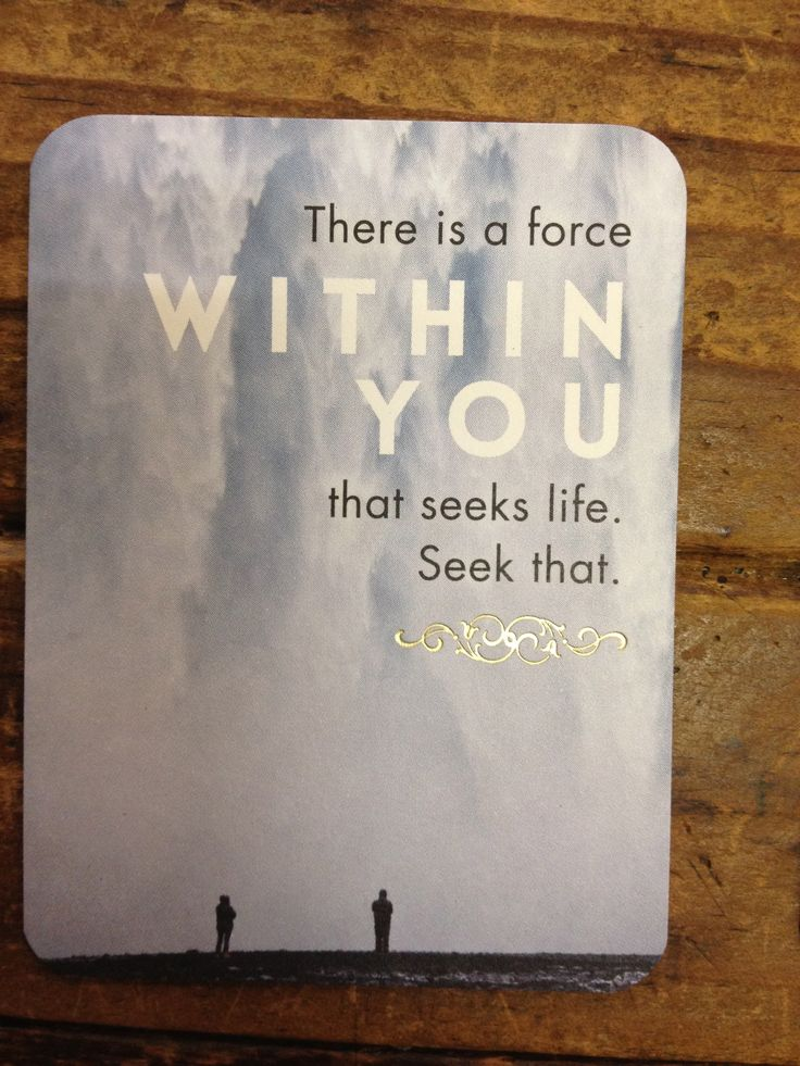 """""""There is a force within you that seeks life.  Seek that."""" - Rumi quote.  Affirmation card series."""