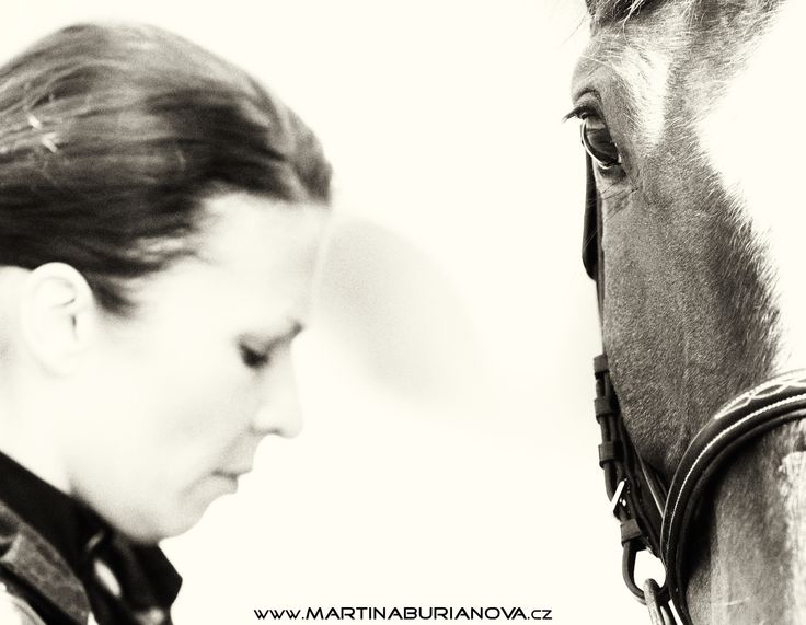 www.martinaburianova.cz Horses - Jumping training