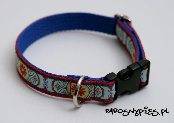 Crazy collors craft dog collar