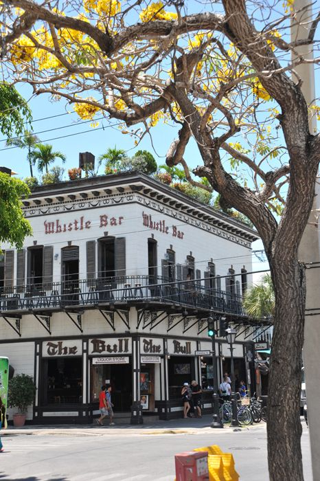 "The Bull & Whistle Bar, Key West - and on top of the bar is the ""scary naked bar"" as we like to refer to it!!"