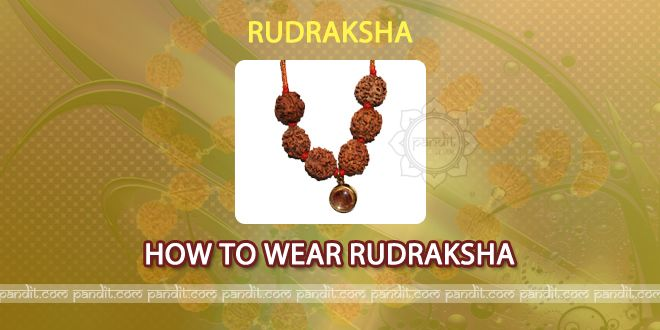 How to Wear by Rahul Kaushal Astrologer -------------------------------------------------------- According to Padam Puraan it should be washed firstly with panchgay- (cowdung, cow urine, cow's milk, cow's curd, cow's ghee) and then with panchamrit-(cow's milk, cow's curd, cow's ghee, honey and sugar) and then it is ready to wear. Then praan pratishta mantra should be chanted while wearing it. http://www.pandit.com/how-to-wear/