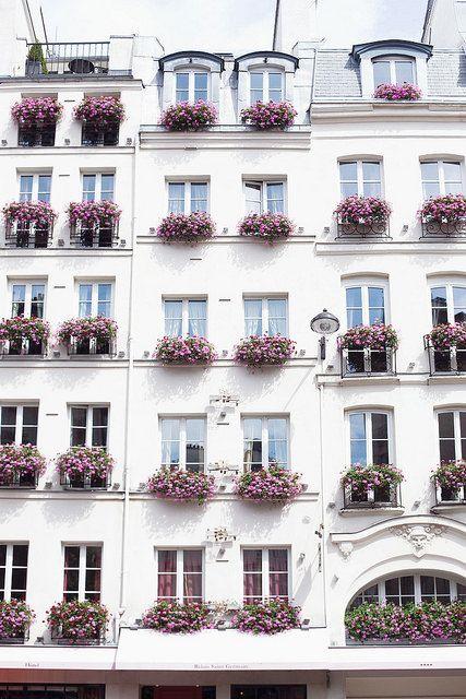 paesaggi-della-mia-anima:  August in Paris by Paris in Four Months on Flickr. August in Paris