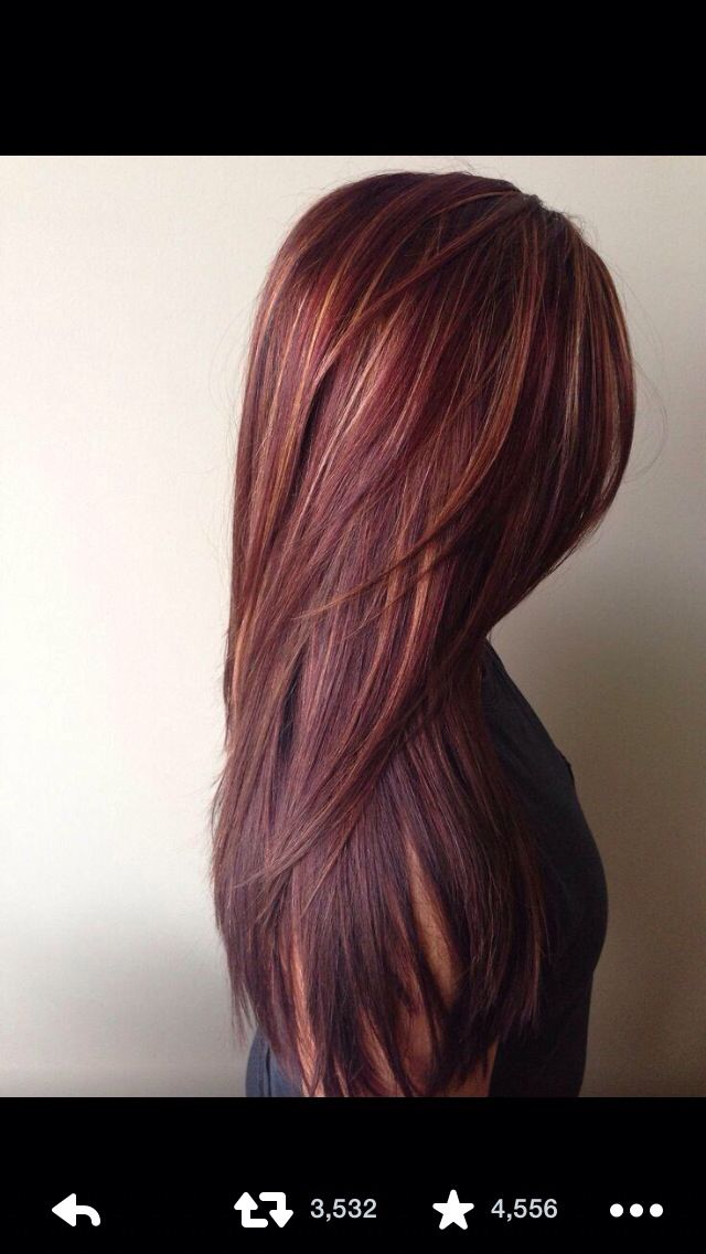 Auburn Hair With Blonde Highlights  Hair   Pinterest  My Hair Highlight
