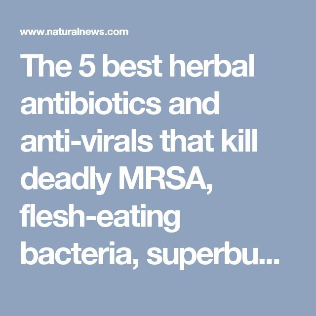 The 5 best herbal antibiotics and anti-virals that kill deadly MRSA, flesh-eating bacteria, superbugs and a host of other pathogens - NaturalNews.com