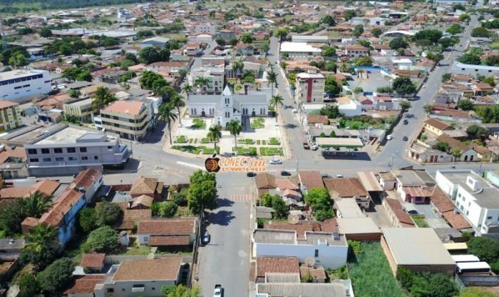 Papagaios Minas Gerais fonte: i.pinimg.com