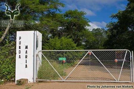 KNP - Punda Maria - Entrance Gate
