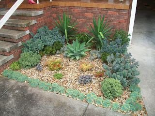 Al's Plants For Sale: A succulent garden bed I created for a friend!